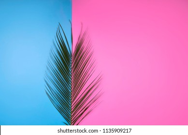 Colorful summer female fashion outfit flat-lay. Palm branches on pink blue background, top view. Summer fashion, holiday concept. Punchy Pastels. New Minimalism