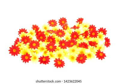 Colorful summer flowers isolated over white background