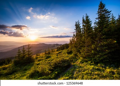 Colorful summer landscape in the Carpathian mountains. Sunset