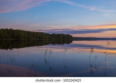 Colorful summer night landscape