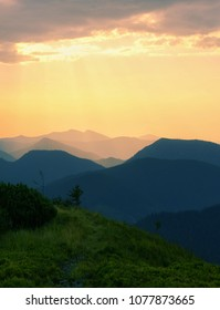 colorful summer sunset in European mountains, picturesque scenic scenery, grass in evening sunlight, wonderful golden sunlight lmage, wallpaper vertical photo,Carpathian national park,  Ukraine