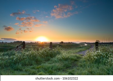 Colorful sunrise over traditional agricultural landscape in spring