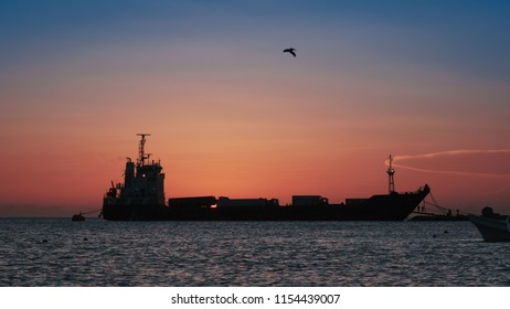 Colorful sunset at the bottom of a cargo ship on the pier of a beautiful bay of the Caribbean, transports containers to an island. A pelican flies in the backlight