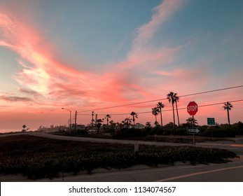 colorful sunset with Californian vibe. palm trees sunset, California