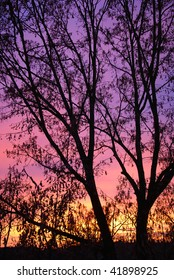 Colorful Sunset During Winter