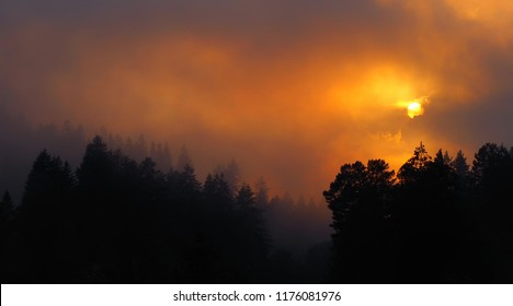 Colorful sunset in foggy weather in late autumn time. Summer misty sun among a fog, clouds and trees. Great light,view,mood,place,shadows.