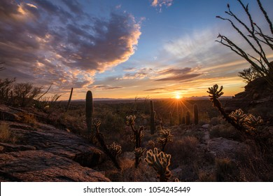 Colorful sunset on the sky line with rock formations and sonoran desert vegetation in the foreground. Tucson, Arizona.