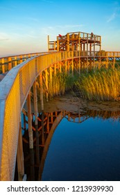 Colorful sunset over boardwalk path through coastal swamp area. Parnu coastal hiking trail. Estonia.