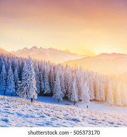 Colorful sunset over the mountain ranges in the national park Carpathians. Fantastically illuminated winter mountains. Ukraine, Europe.