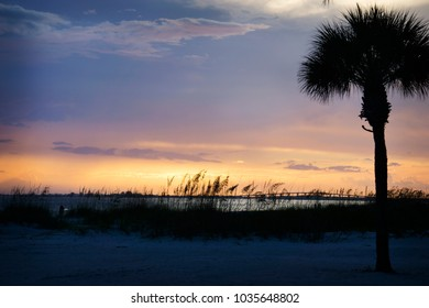 A colorful sunset with a palm tree and grasses in front of the ocean as seen from Ft. Myers Beach, Florida.