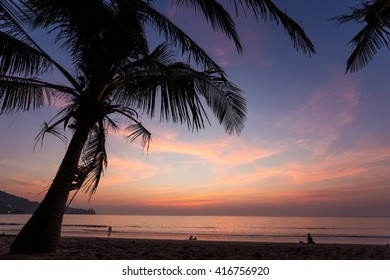 A colorful sunset seen from under a coconut tree at Kamala beach in Phuket Thailand