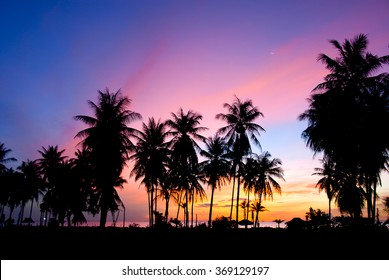 Colorful sunset sky with silhouette coconut palm trees and small beach hut in Thailand