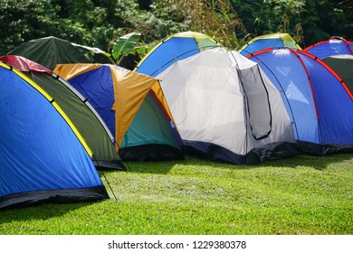 Colorful tents at green grass camping site with rainforest background during warm morning lights.