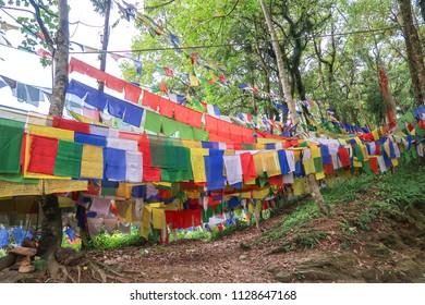 Colorful Tibetan pray flag at Gangtok Sikkim decoration at pathway