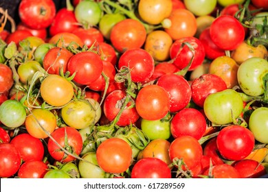 colorful tomatoes background