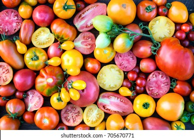 Colorful Tomatoes Background. Fresh Organic Tomatoes Texture.