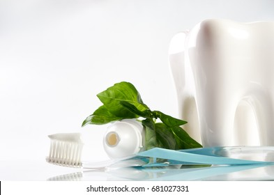 Colorful toothbrush with toothpaste white healthy ceramic tooth model and fresh mint leaf isolated on white background with copy space.