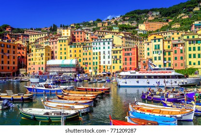 Colorful traditional houses in the Old Town harbour of Camogli, Genoa, Italy