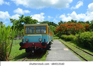 Colorful train in sugar cane fields, Guadeloupe