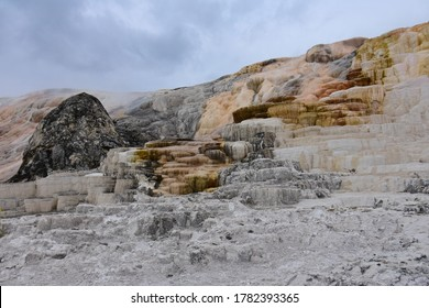 the colorful travertine terraces of minerva terrace in summer at mammoth hot springs in yellowstone national park, wyoming