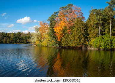 Colorful tree leaves in the fall reflected in a lake