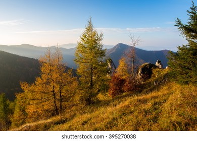 Colorful trees and hills, Slovakia