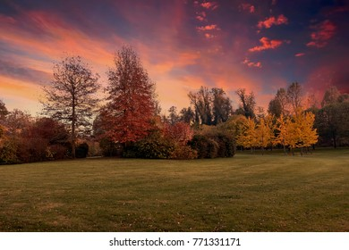 colorful trees in park in autumn
