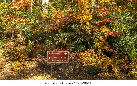 The colorful trees of smokey mountains in fall