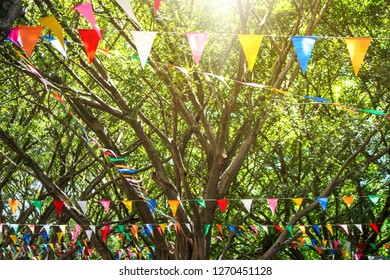 Colorful triangle flag hanging on rope tied to the tree and blue sky background