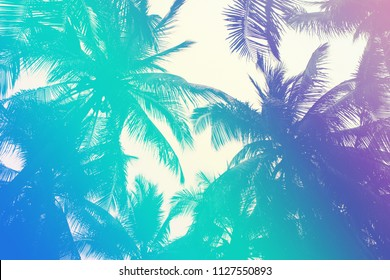 Colorful tropical 90s/80s style palm tree jungle background texture with pink, turquoise gradient