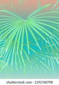 Colorful tropical 90s/80s style palm tree jungle background texture with pastel turquoise gradient