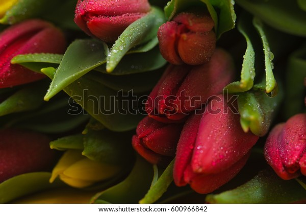Colorful tulips bouquet background