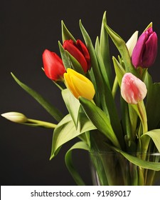 Colorful tulips on the black