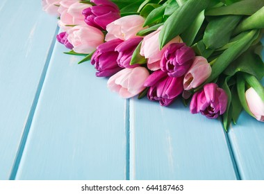 Colorful tulips on blue wood background, copy space. Bouquet of flowers