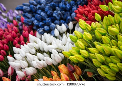 Colorful tulips on sale in Amsterdam flower market.  flowers at the market in Amsterdam, Netherlands/