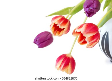 Colorful tulips in a vase isolated on white background