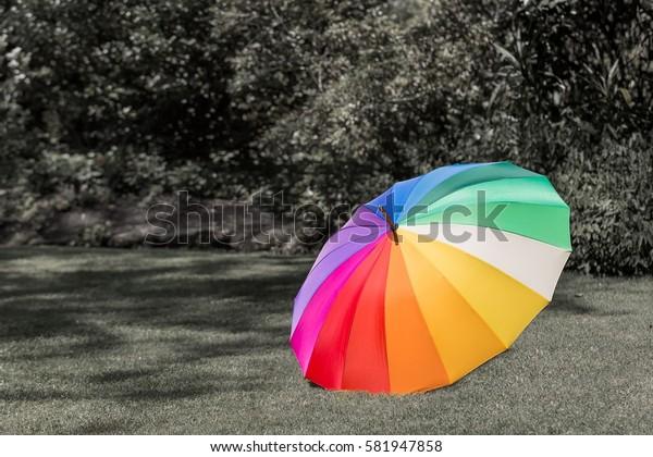 A colorful umbrella on the grass field