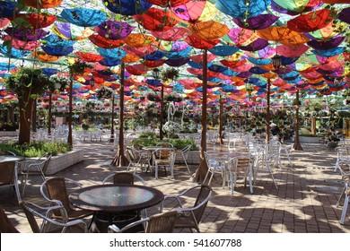Colorful umbrellas in Dubai Miracle Garden, United Arab Emirates