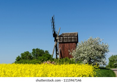 Colorful view of an old wooden windmill by spring season on the swedish island Oland