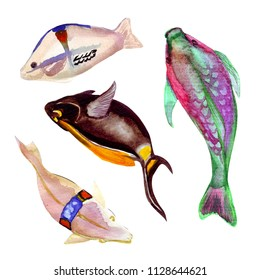 Colorful watercolor fish set. Handdrawn illustration