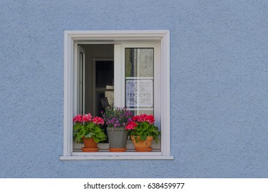 colorful window with flower pots and embroidery stitch