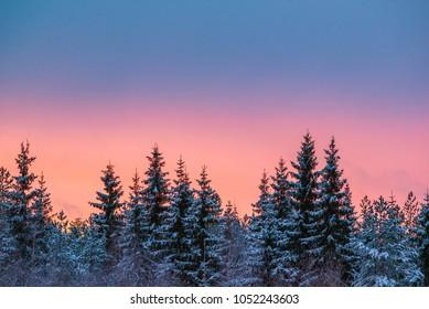 Colorful winter landscape after sunset