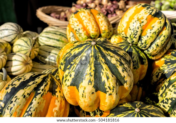 Colorful Winter Squashes Farmers Market Background Stock