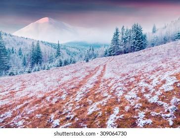Colorful winter sunrise in the Carpathian mountains. Kukol ridge, Ukraine, Europe. Inastagram toning.