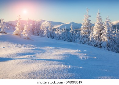 Colorful winter sunrise in the mountains. Fresh snow glowing first sunlight at the morning.