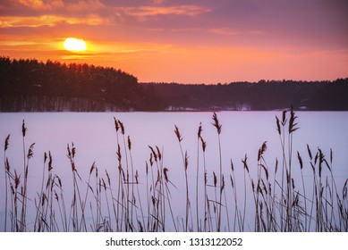 Colorful winter sunset above forest near the frozen lake.