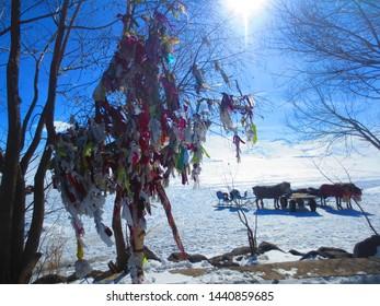 Colorful Wishing Tree of Lake Cildir, Ardahan, Turkey