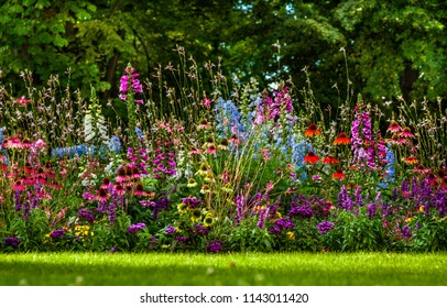 colorfull flower bed in garden