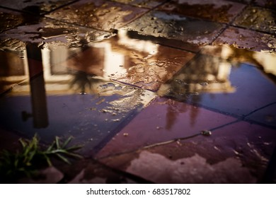 Colorfull Puddle