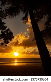 colorfull Sunrise over the coral sea at Cape Tributation in the Daintree region of far north Queensland with palms